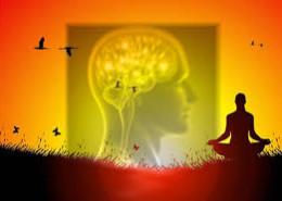 cervello e meditazione