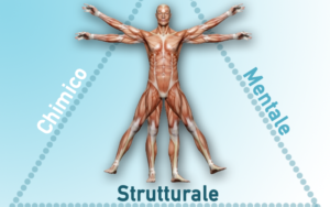 immagine-kine-struttura